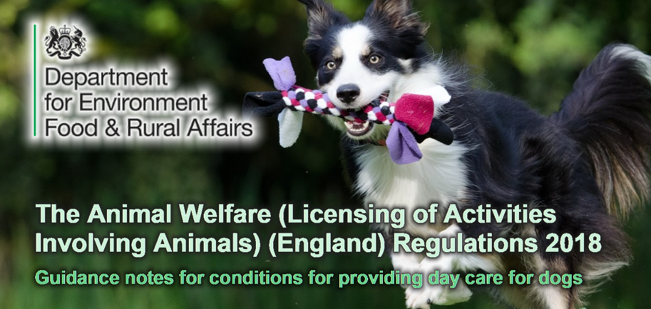 The Animal Welfare (Licensing of Activities Involving Animals) (England) Regulations 2018 Guidance notes for conditions for providing day care for dogs