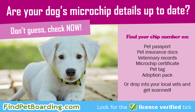 Are your dog's microchip details up to date? Don't guess, check now!