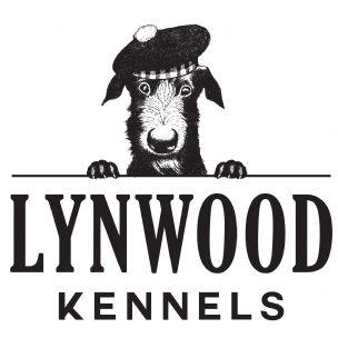 Dog Kennels In Neath Port Talbot