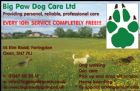 Big Paw Dog Care Ltd