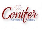 Conifer Kennels
