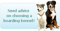 Need help Choosing a Boarding Kennel?