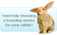 Help Choosing Rabbit Boarding